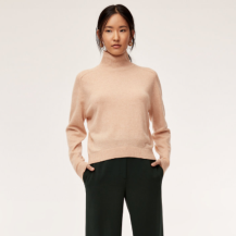 https://www.aritzia.com/en/product/perry-turtleneck/68657.html?dwvar_68657_color=14800