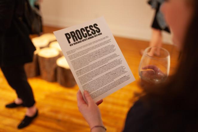 process 13